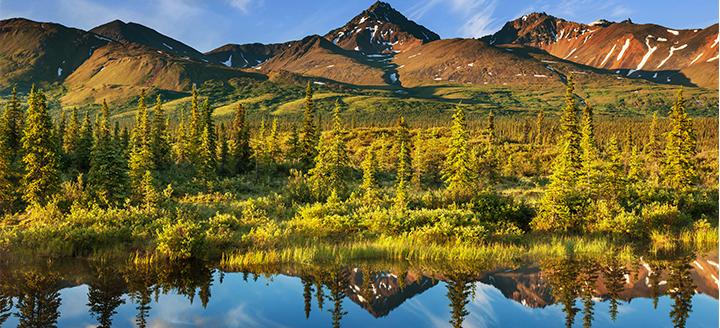 Alaska Wineries