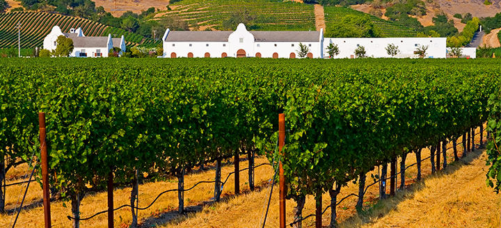 Best Healdsburg Wineries