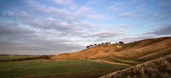 Chalk Hill Wineries