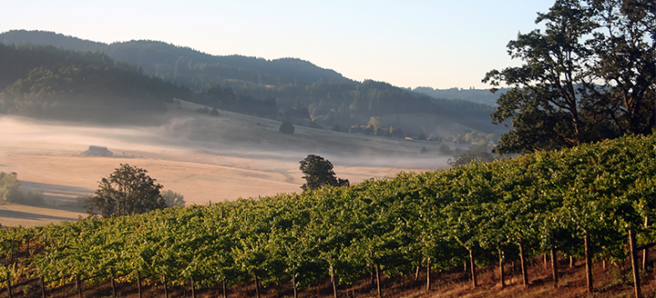 List of Oregon Wineries