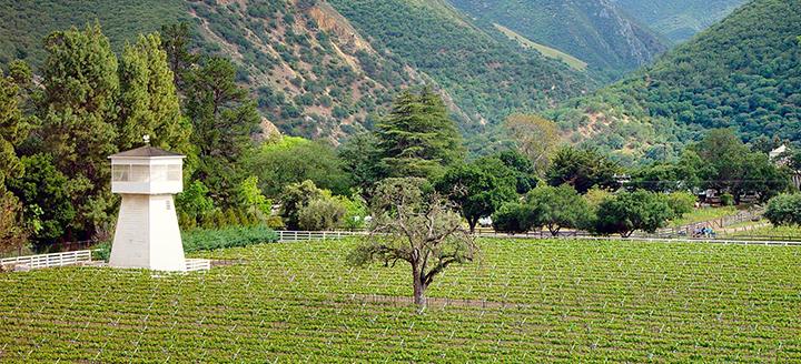 Monterey Wine Tasting