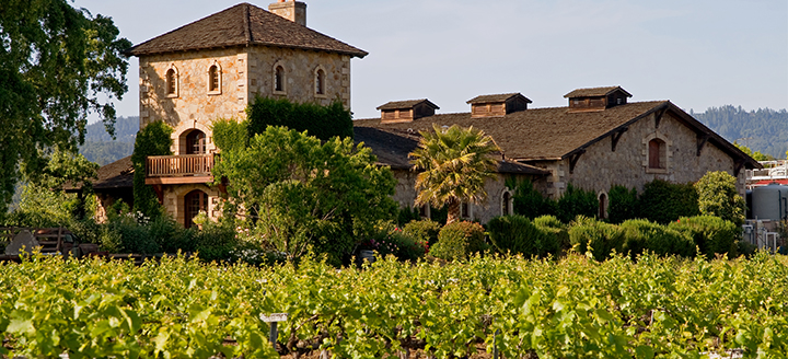 Popular Wineries in Napa