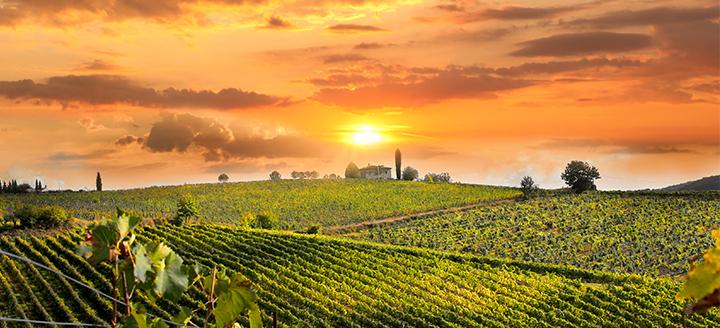 US Wineries