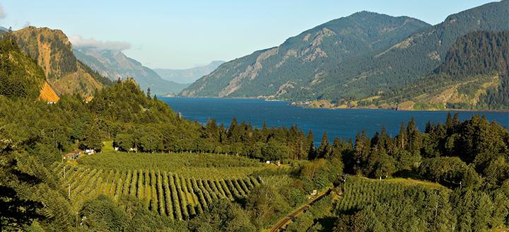 Wineries in Washington
