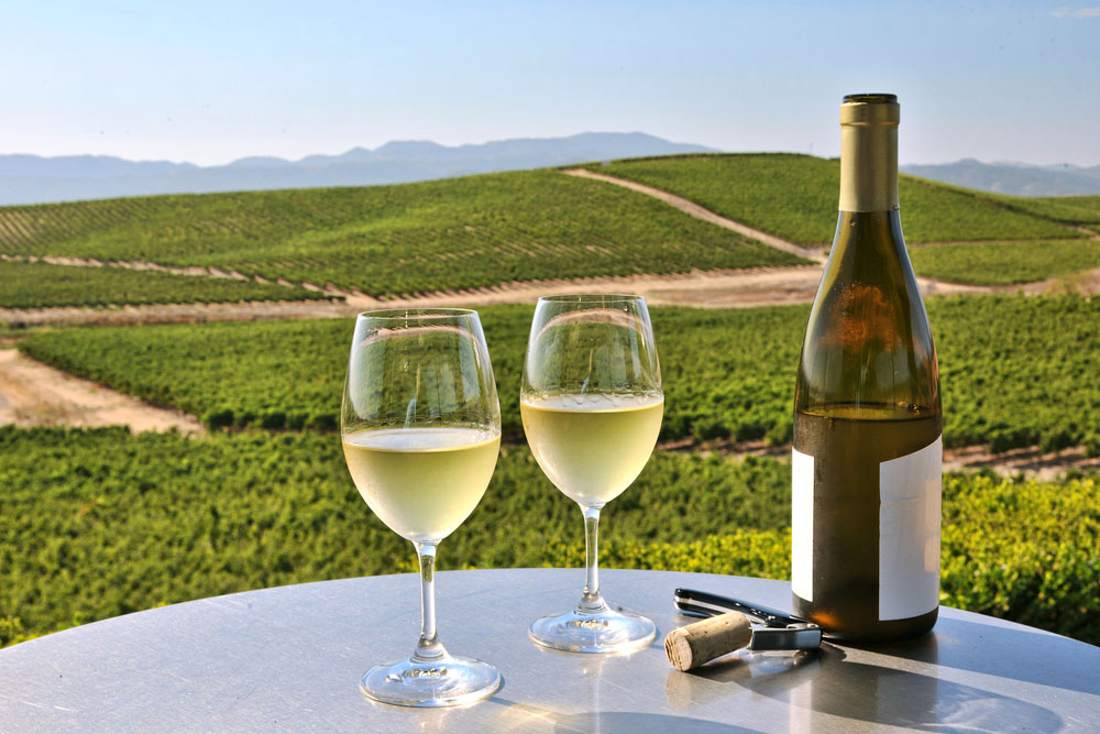 Napa Valley Hotels With Wine Tours Packages