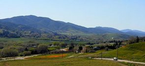 LEONA VALLEY WINERIES