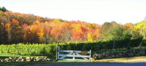 NEW ENGLAND WINERIES