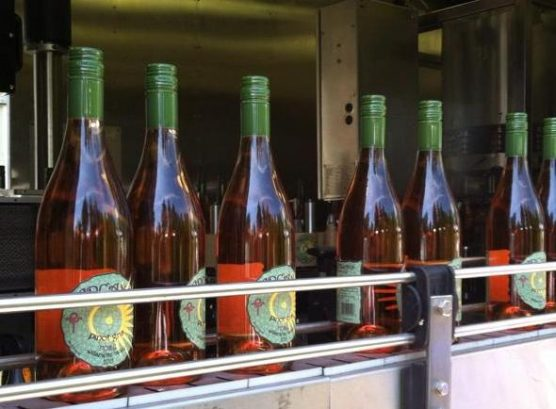 Arcane Cellars & Arcane Cellars United States Oregon Salem | Kazzit US Wineries ...