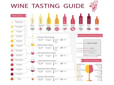 A COMPREHENSIVE WINE GUIDE FOR THE INEXPERIENCED