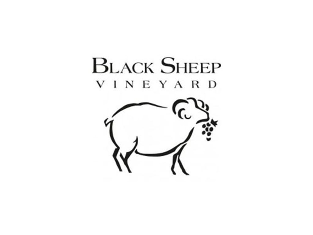 Black Sheep Vineyard