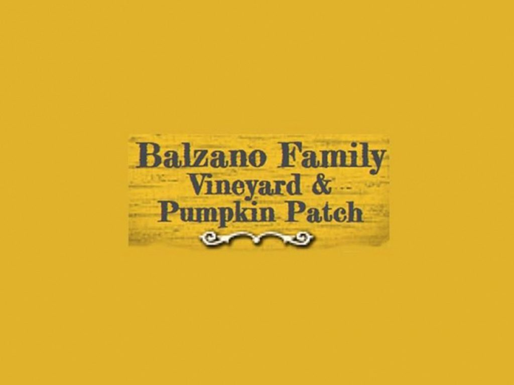 Balzano Vineyard and Pumpkin Patch