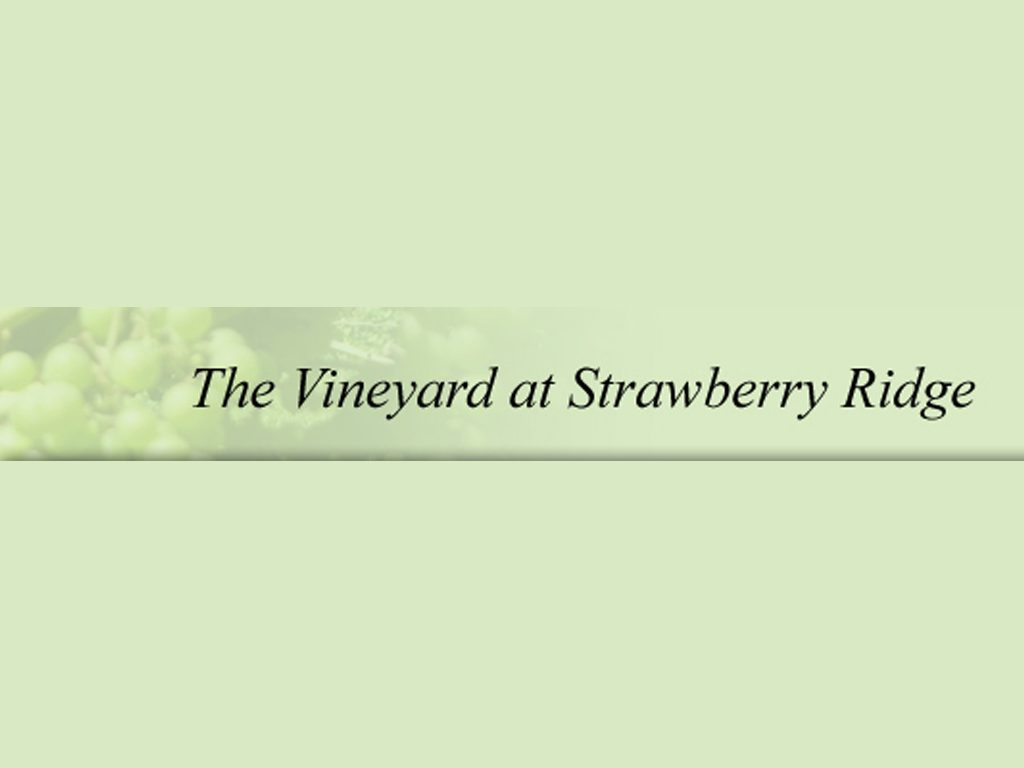 Vineyard at Strawberry Ridge