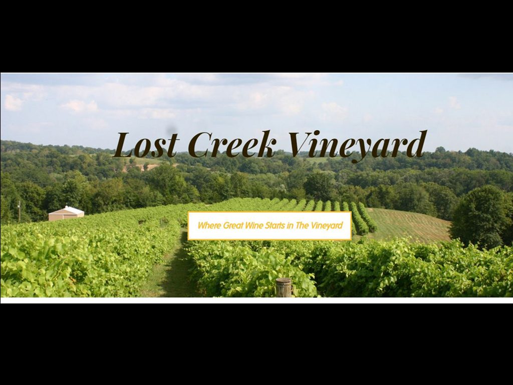 Lost Creek Vineyard
