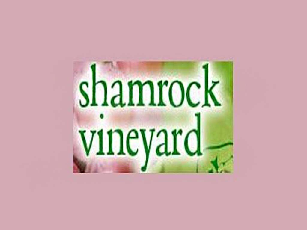 Shamrock Vineyard