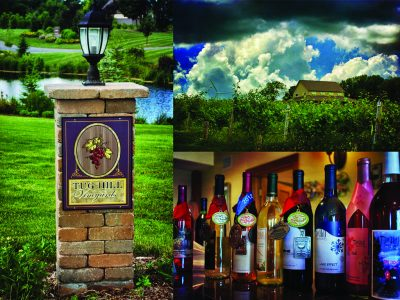 TUG HILL WINERY