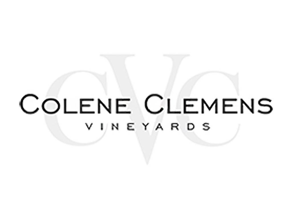 Aerial view over Colene Clemens, Willamette Valley, Oregon