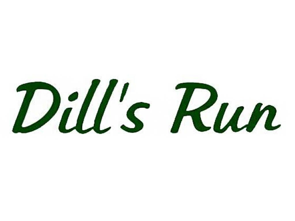 Dill's Run Vineyard