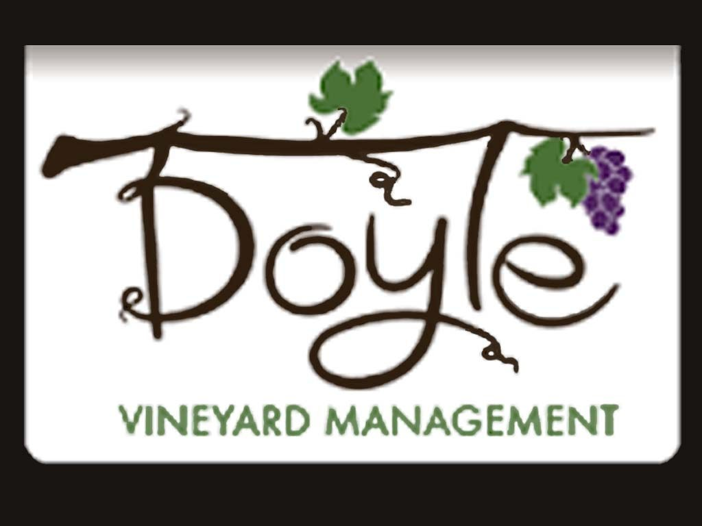 Doyle's Vineyard