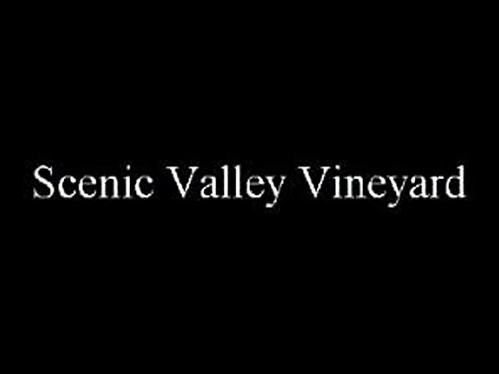 Scenic Valley Vineyard