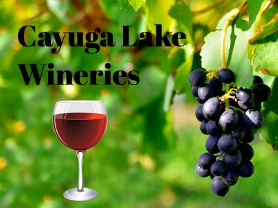 LIST OF OUR FAVORITE CAYUGA LAKE WINERIES