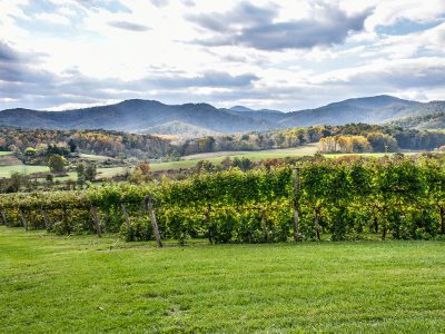 VIRGINIA WINERIES MAP & INFORMATION