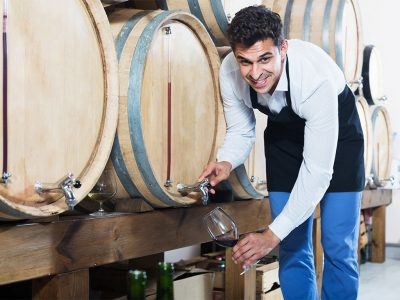 DIFFERENCES BETWEEN VINIFICATION USING OAK VATS OR STAINLESS STEEL
