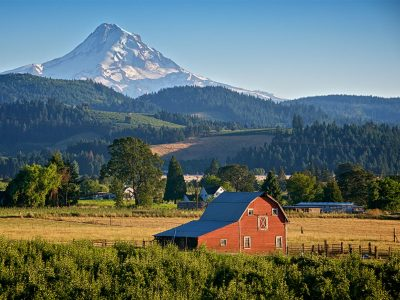 THE BEST WINE TOURS IN PORTLAND, OREGON