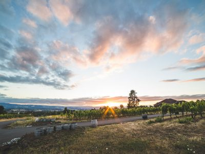 THE BEST OREGON WINERIES WITH A SPECTACULAR VIEW