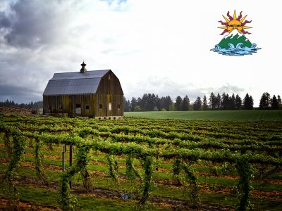 AN OVERVIEW OF THE WILLAMETTE VALLEY TOUR BY SEA TO SUMMIT TOURS