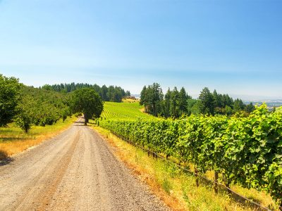 THE 5 MOST UNIQUE WINE TRAILS IN OREGON