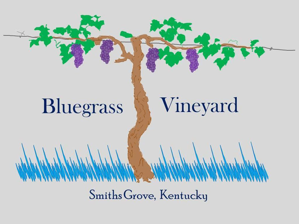 Bluegrass Vineyard