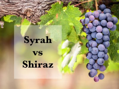WHAT IS THE DIFFERENCE BETWEEN SYRAH AND SHIRAZ?
