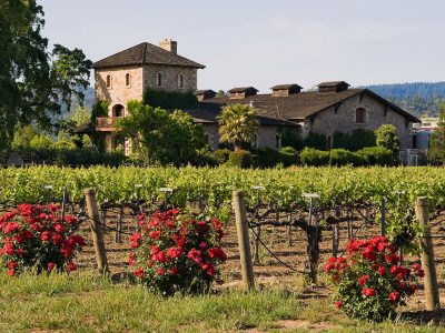 BEST WINERIES TO VISIT IN NAPA