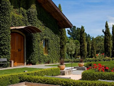 THE BEST VINEYARDS IN NAPA
