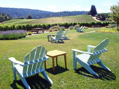 BEST WINE TASTING IN NAPA