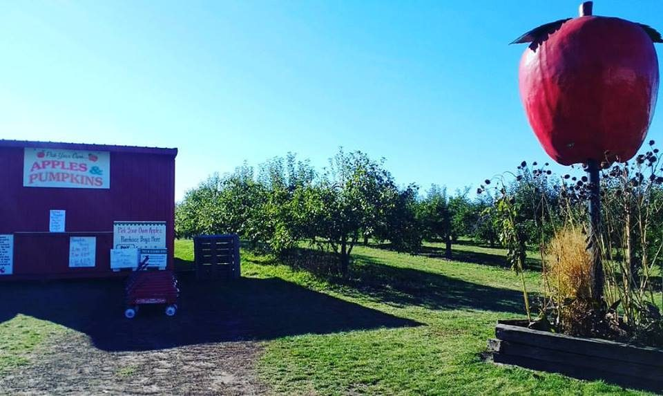 Apple Barn Orchard & Winery, United States, Wisconsin ...