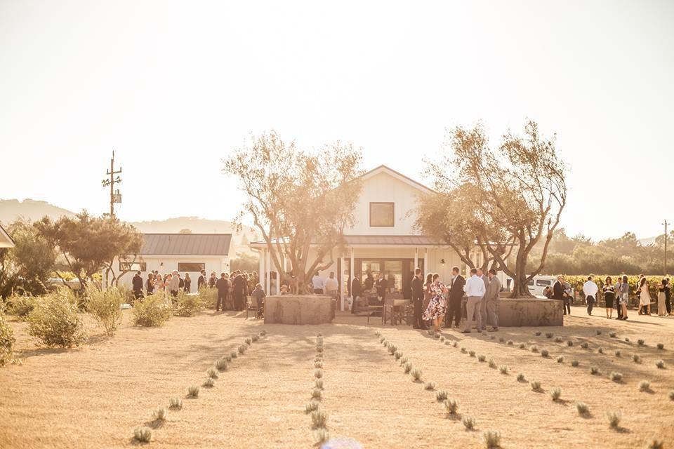 Biddle Ranch Vineyard United States California San Luis Obispo Kazzit Us Wineries International Winery Guide
