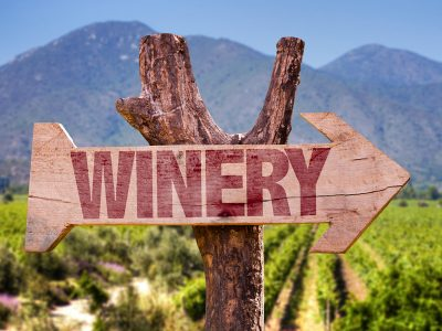WHY YOU SHOULD CONSIDER CHECKING OUT WINE TASTING TOURS?