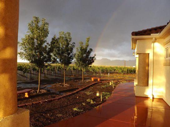 Cella Wines, United States, Arizona, Kingman  Kazzit US Wineries u0026 International Winery Guide
