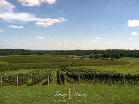 Trump Winery United States Virginia Charlottesville