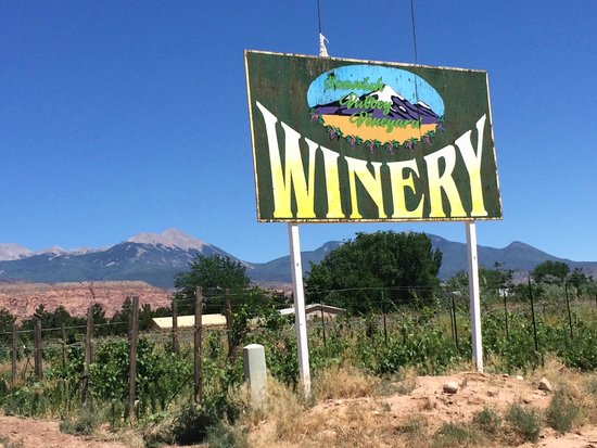 Wine Tasting in Utah - Spanish Valley Vineyard