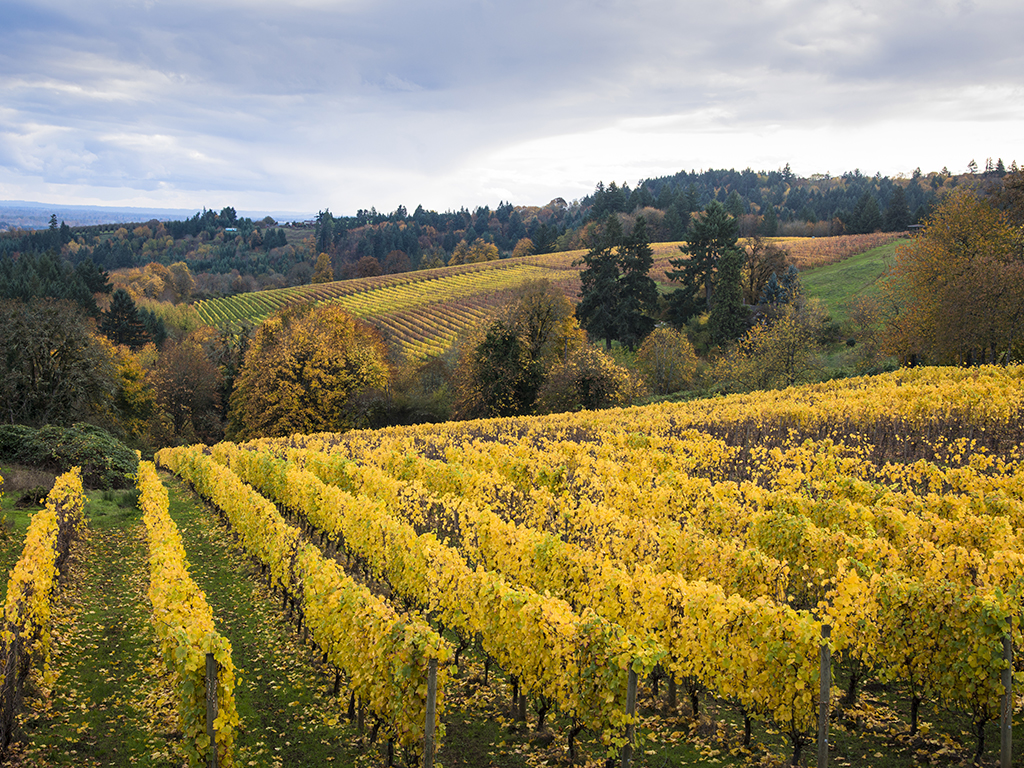 Map of Willamette Valley's Wineries