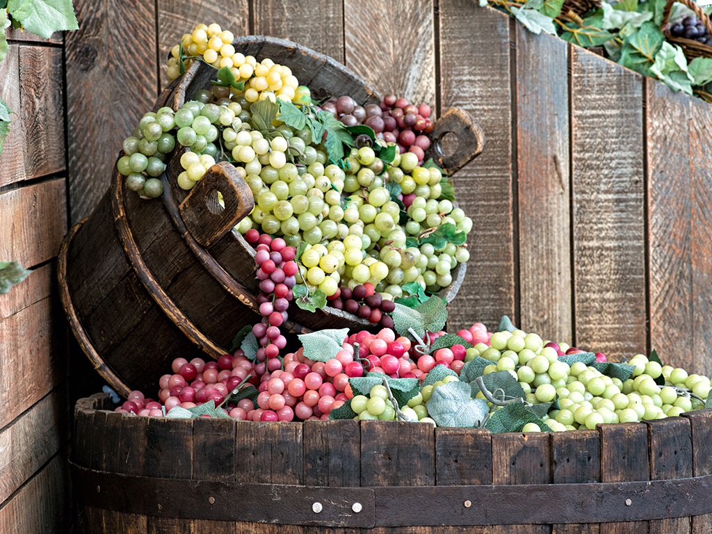 Wine grapes kazzit us wineries international winery guide - Difference between wine grapes and table grapes ...