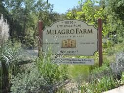 Villa Milagro Vineyards