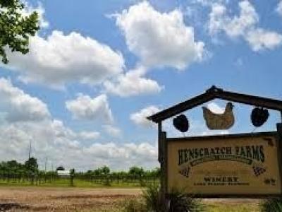 Henscratch farms vineyard & winery