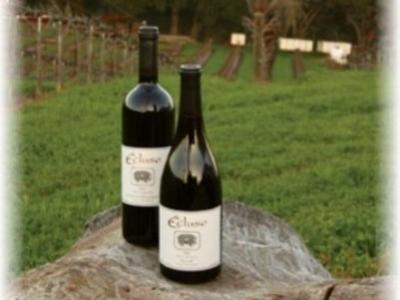 Écluse Wines