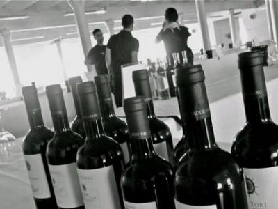 Baratto Wines
