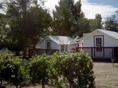 Shadow Mountain Vineyards