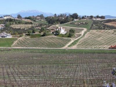 Vindemia Estate Winery