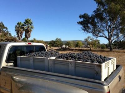 Corralitos Wine Company